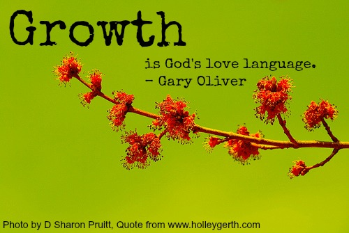 You Can Grow No Matter What