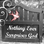 Nothing Surprises God by Holley Gerth