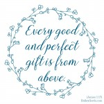 Every good and perfect gift is from above. {James 1:17}
