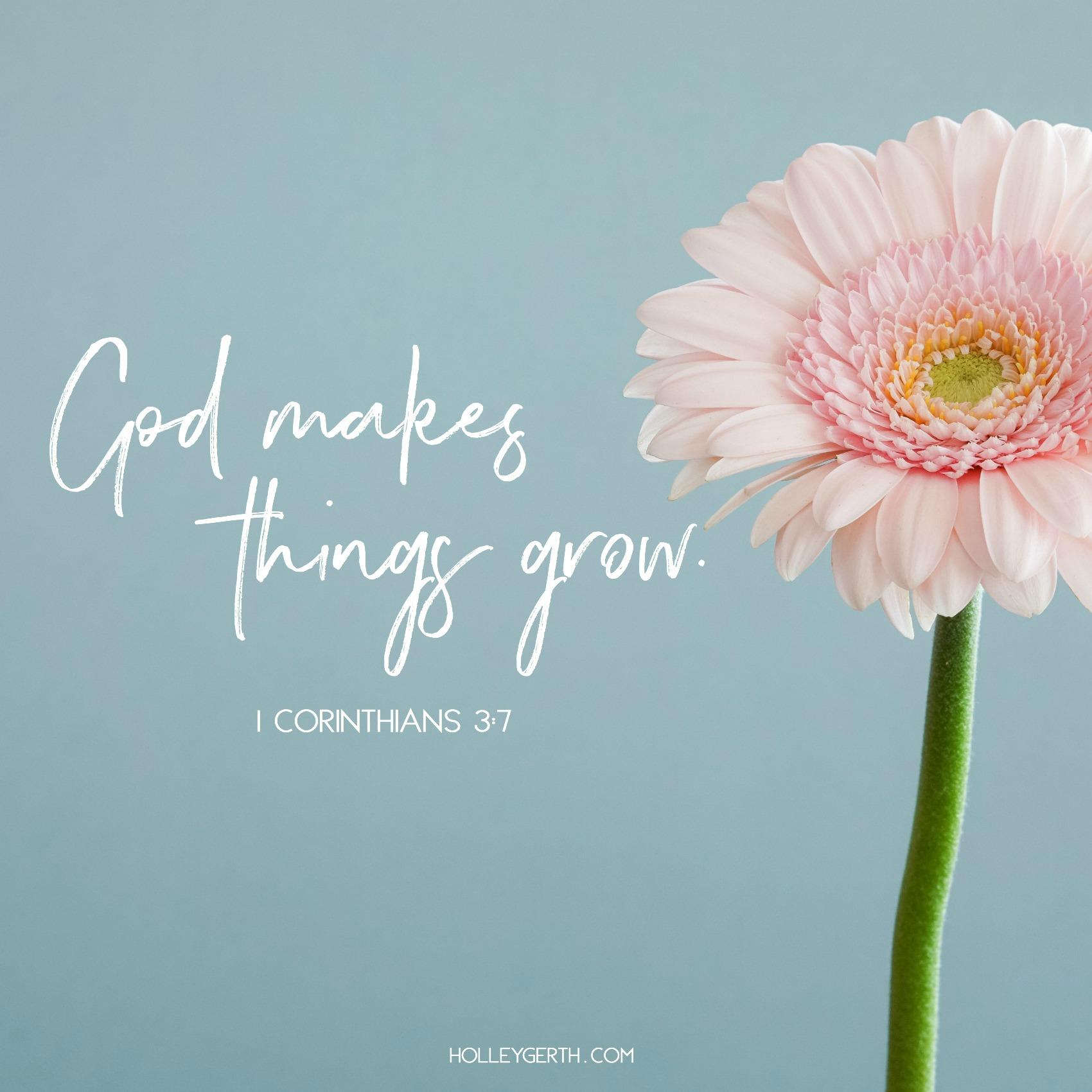 God makes things grow. 1 Corinthians 3:7