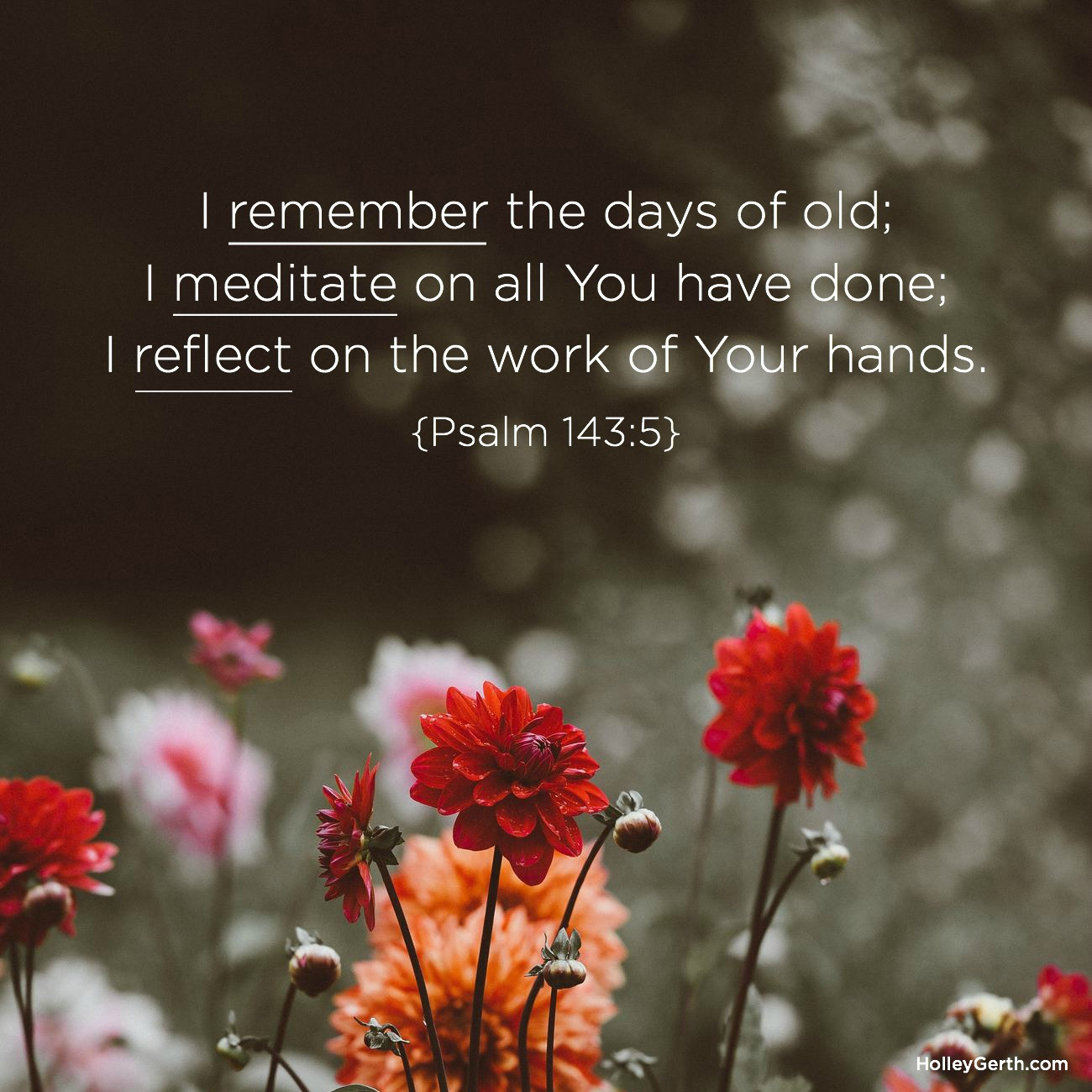 I remember the days of old; I meditate on all You have done; I reflect on the work of Your hands. {Psalm 143:5}